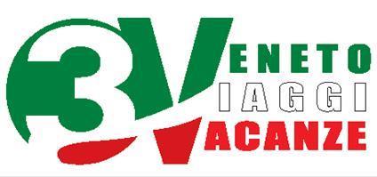 logo3V